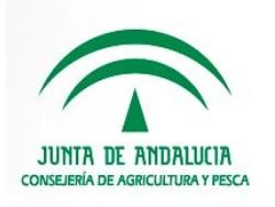 Junta de Andalucia